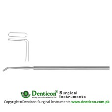 Hoen Dura Dissector Stainless Steel, 15 cm - 6""