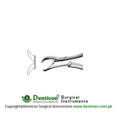 Cowhorn American Pattern Tooth Extracting Forcep (Child) Fig. 23S (For Lower Molars) Stainless Steel, Standard