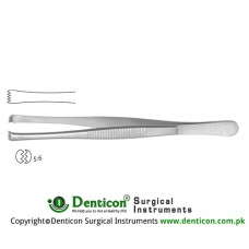 Lerche Dissecting Forcep 5 x 6 Teeth Stainless Steel, 15 cm - 6""