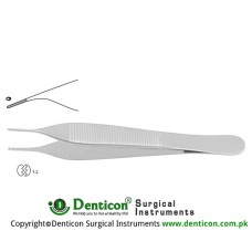 Mini-Adson Dissecting Forceps Angled - 1 x 2 Teeth Stainless Steel, 12 cm - 4 3/4""