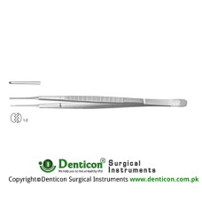 Dissecting Forceps Straight - 1 x 2 Teeth Stainless Steel, 23 cm - 9""