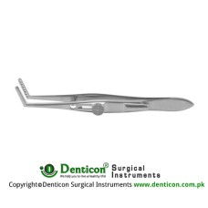 Jameson Muscle Forcep Right - With Slide Lock 6 Teeth - Adult Size Stainless Steel, 10 cm - 4""