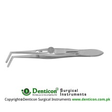 Jameson Muscle Forcep Left - With Slide Lock 4 Teeth - Child Size Stainless Steel, 9.5 cm - 3 3/4""