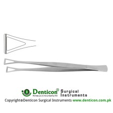 "Collin-Duval Intestinal Forceps Stainless Steel, 20 cm - 8"" Width 14.0 mm"