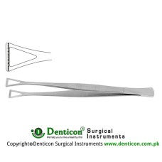 "Collin-Duval Intestinal Forceps Stainless Steel, 20 cm - 8"" Width 18.0 mm"