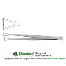 "Collin-Duval Intestinal Forceps Stainless Steel, 20 cm - 8"" Width 27.0 mm"
