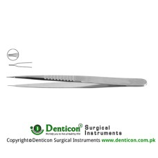 "Micro Vessel Dilator Stainless Steel, 11 cm - 4 1/4"" Diameter 0.20 mm Ø"
