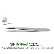 "Micro Pierse Forceps Stainless Steel, 11 cm - 4 1/4"" Diameter 0.30 mm Ø"