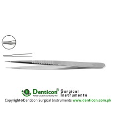 "Micro Vessel Dilator Stainless Steel, 13 cm - 5"" Diameter 0.30 mm Ø"