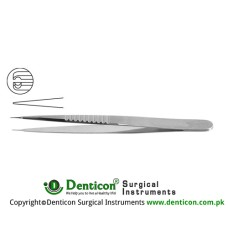 "Micro Pierse Forceps Stainless Steel, 13 cm - 5"" Diameter 0.30 mm Ø"