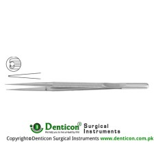 "Micro Pierse Forcep With Counter Balance Stainless Steel, 15 cm - 6"" Diameter 0.30 mm"