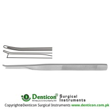 "Silver Chisel Right Stainless Steel, 18 cm - 7"" Blade Width 5.0 mm"