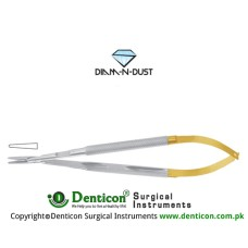 Diam-n-Dust™ Micro Needle Holder Straight - Round Handle - With Lock Stainless Steel, 16 cm - 6 1/4""