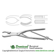 Ulrich Bone Holding Forcep Curved - With Thread Fixation Stainless Steel, 27 cm - 10 3/4""